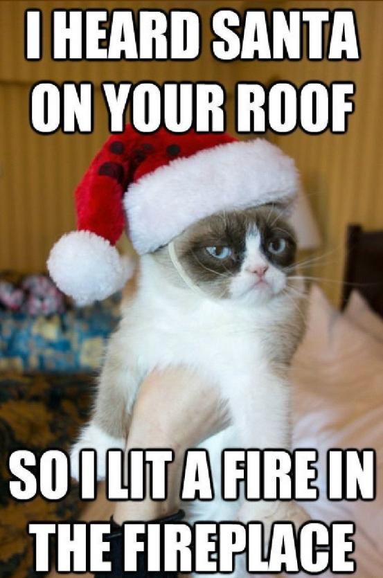 grumpy cat santa fire